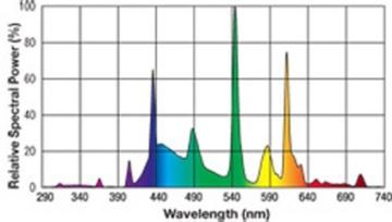 Exo Terra PT2153 Leuchtstoffröhre