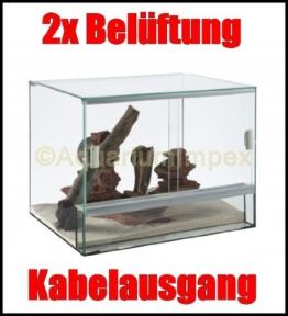 Terrarium Glas