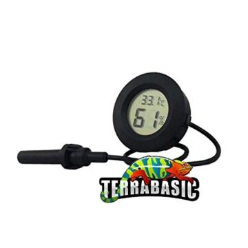 Terrarium 120x60x60